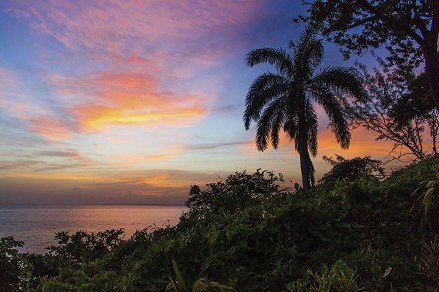 Giamaica 10
