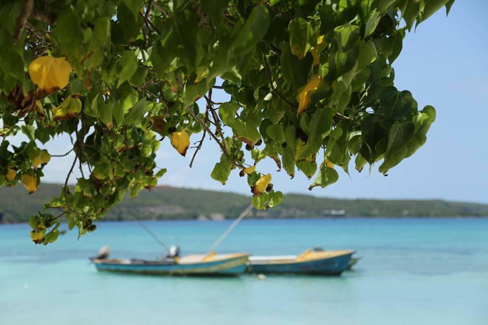 Giamaica 9